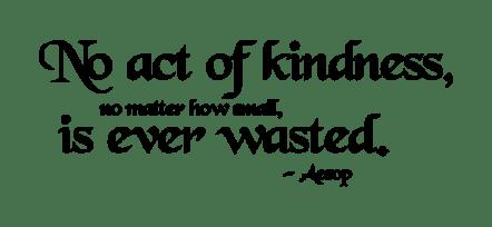 dchitwood_noactofkindness-1