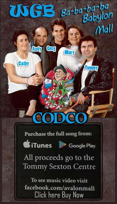 Codco wiget 3 blue