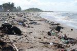 Litter_garbage_pollution