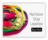 rainbow-dog-leashes2