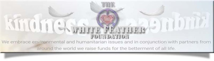 whitefeather2