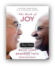 the-book-of-joy2