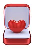 heart-case